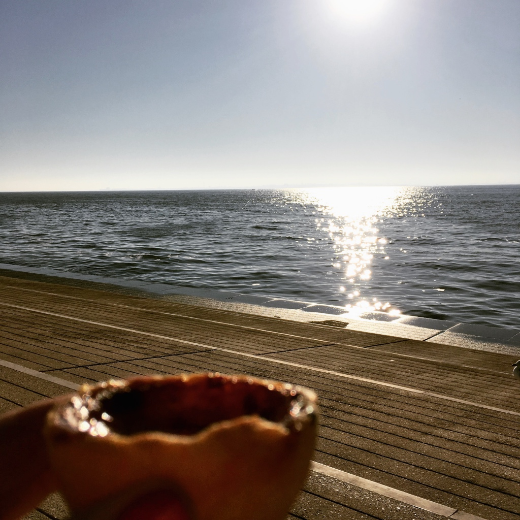 Pastel de Nata in the Sun