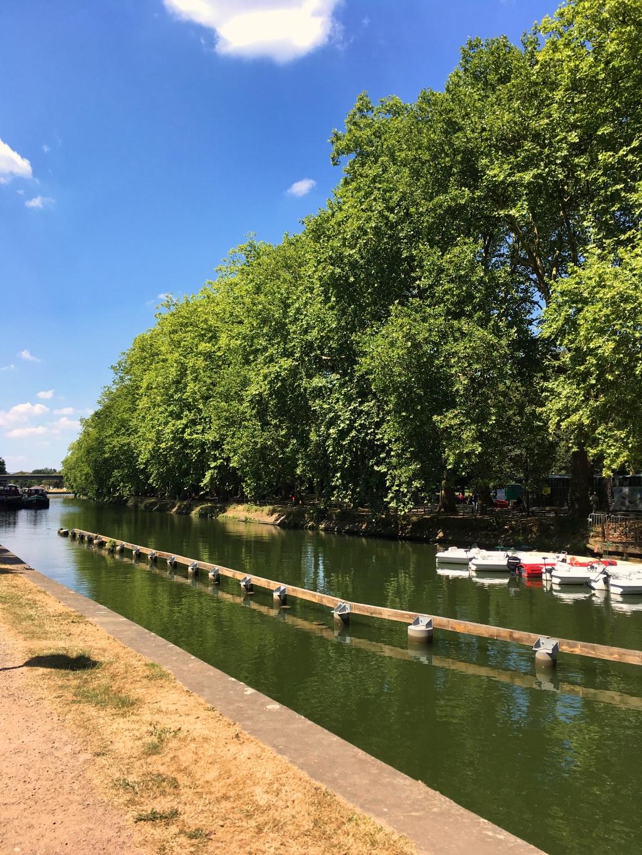 Lille Park